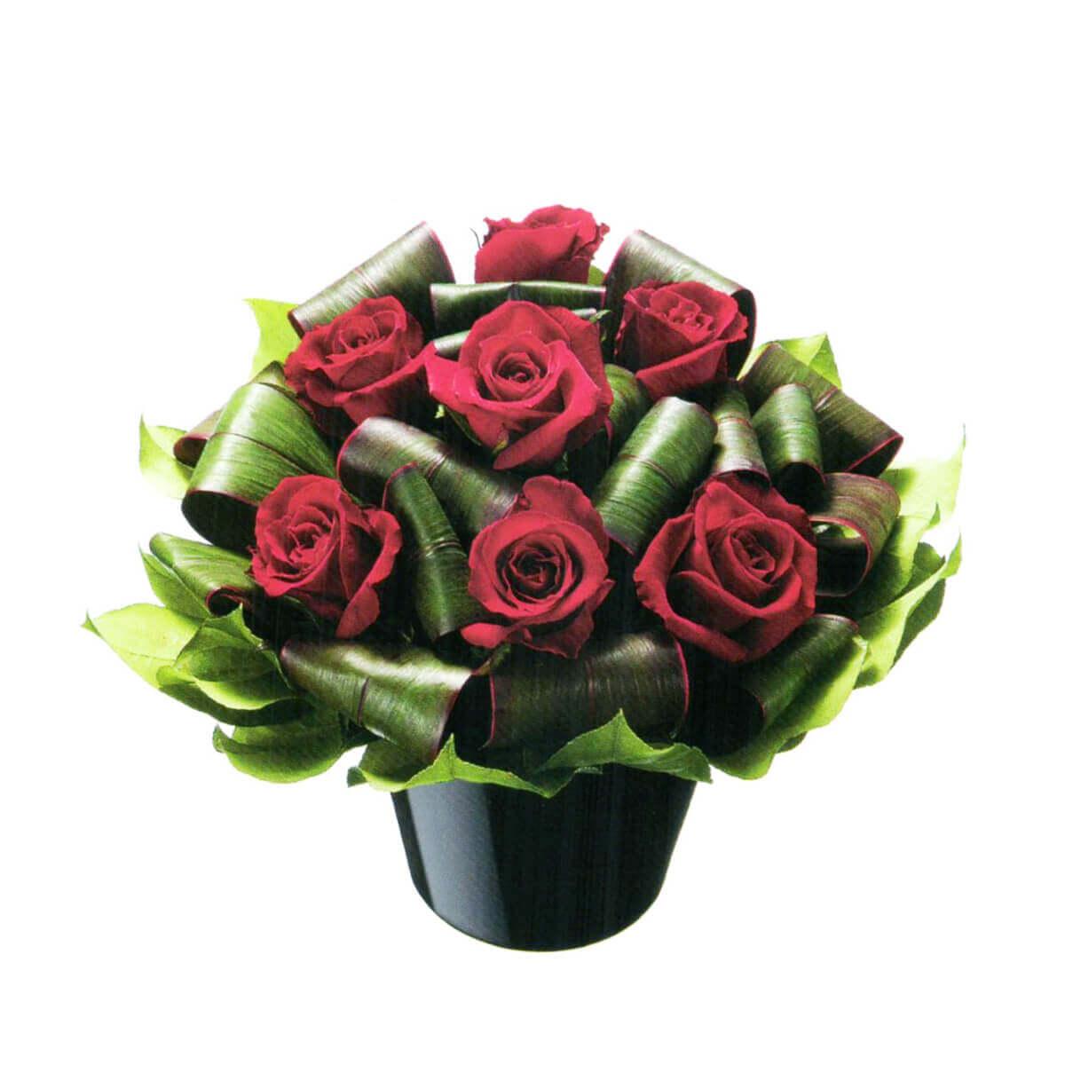 花はるのプレゼント用祝い花19