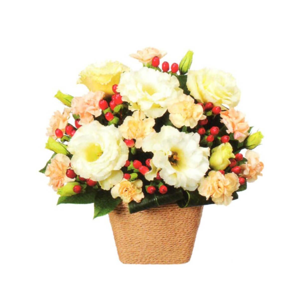 花はるのプレゼント用祝い花15