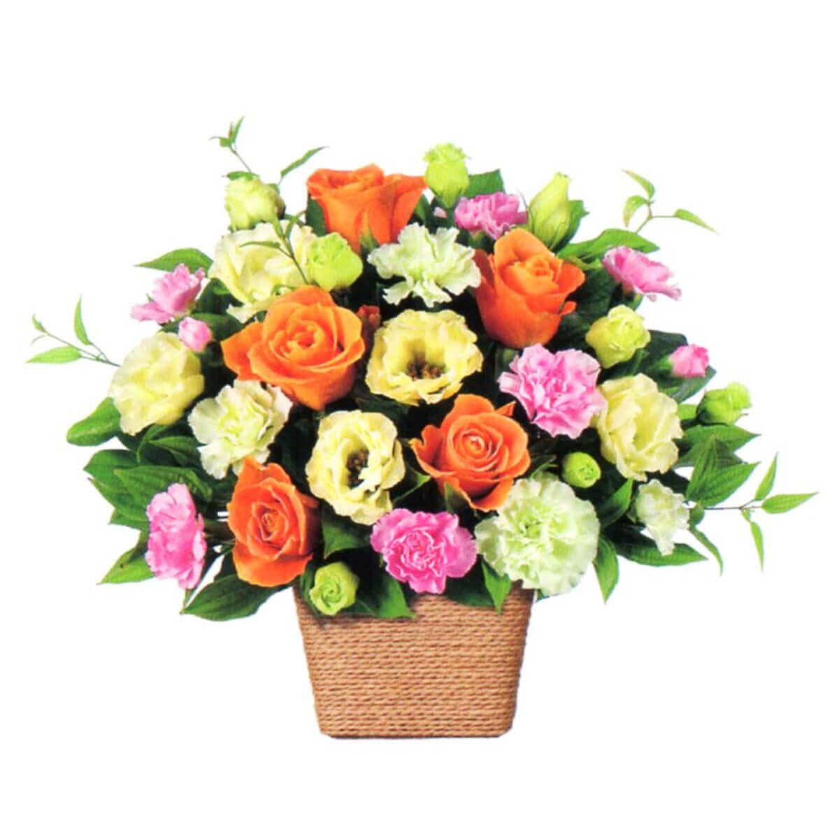 花はるのプレゼント用祝い花10