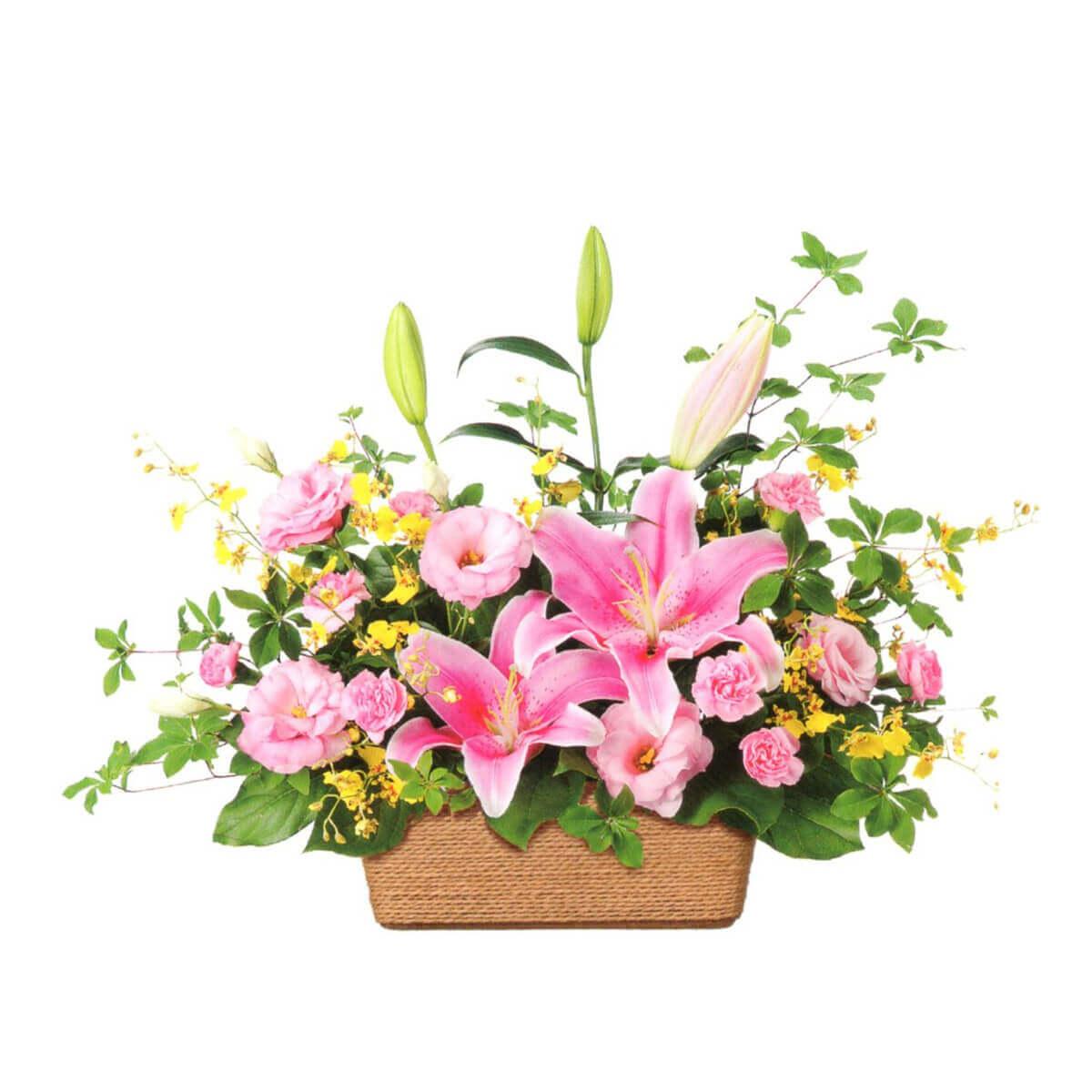 花はるのプレゼント用祝い花4