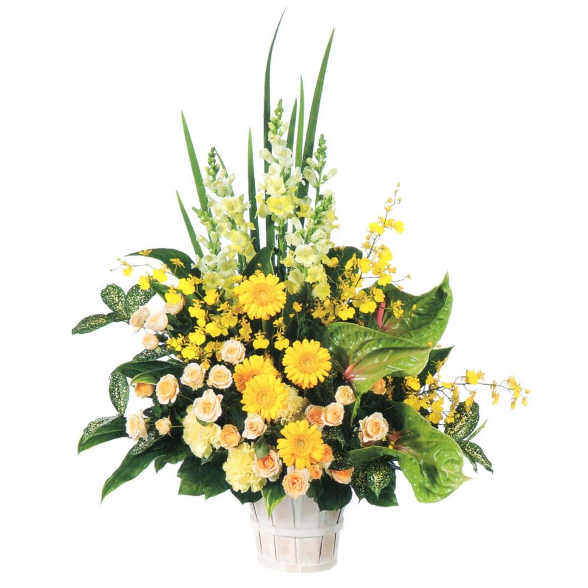 花はるのプレゼント用祝い花2